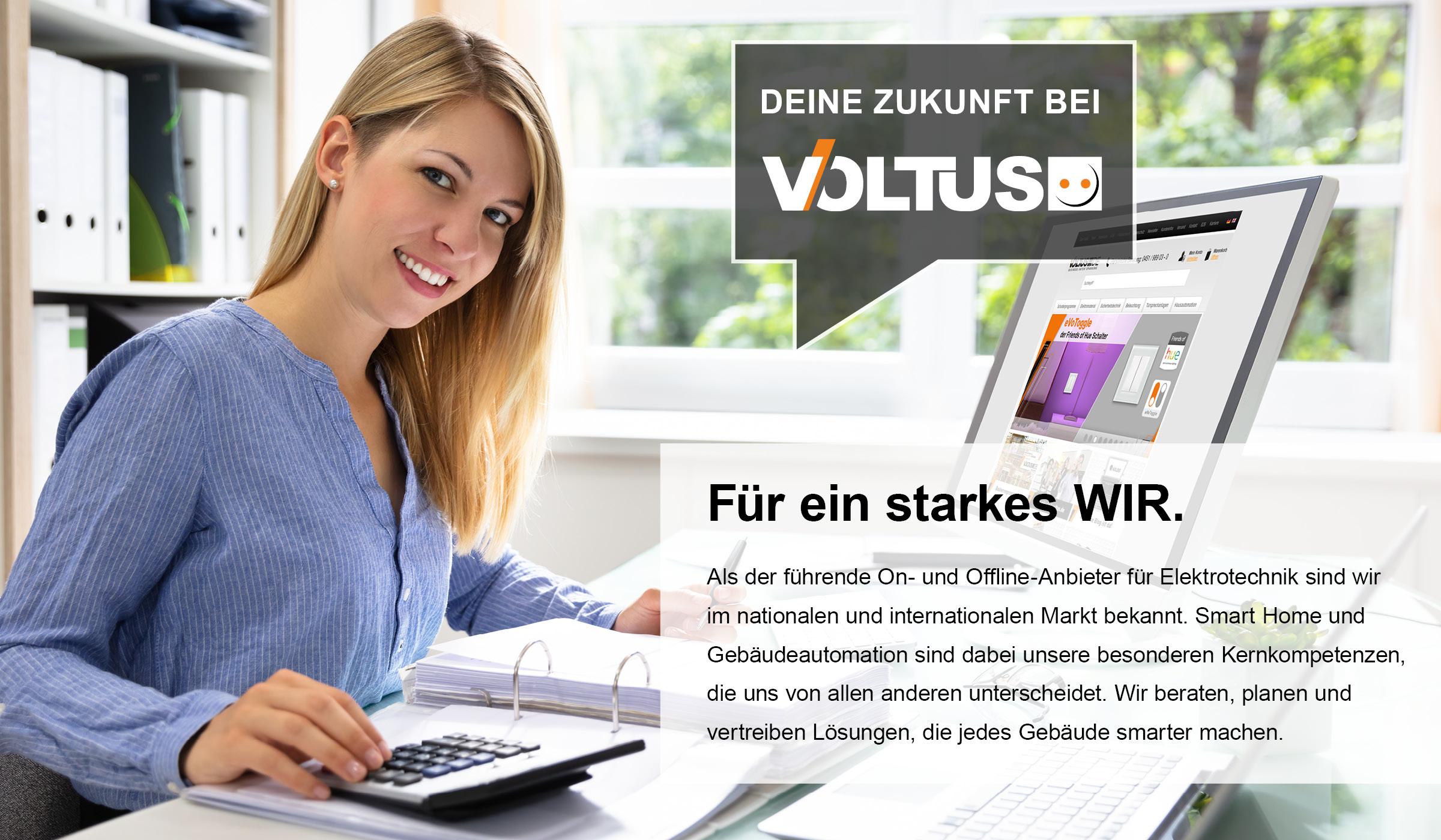 Deine Zukunft als Buchhalter bei Voltus